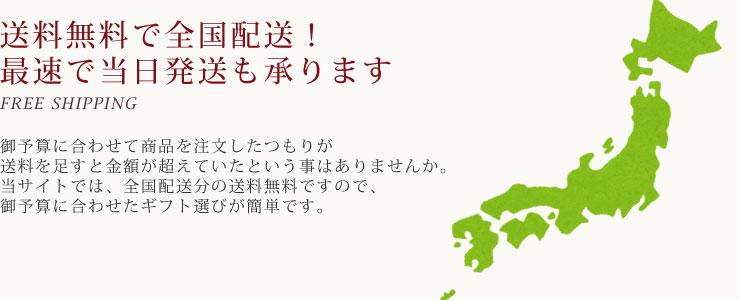 送料無料で全国配送!